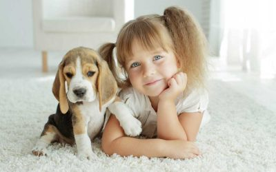 Perfect First Pets for Small Kids
