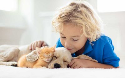 Social Benefits of Children Owning Pets